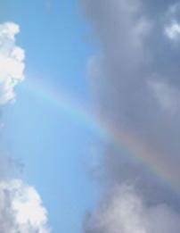 Rainbow-202-260