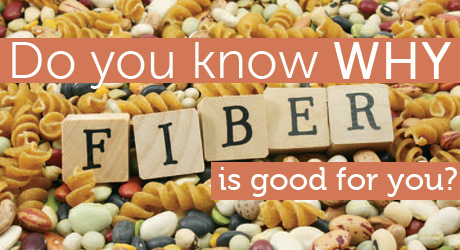 Spotlight On...Fiber
