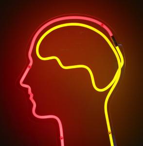 Beat Your Pregnancy Brain