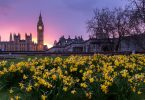 Visit These Locations in London to Take a Break from City Life